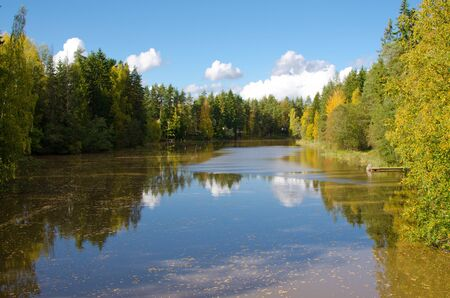 suomi: A river surrounded of trees in autumn