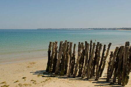 wood pillars: Wooden pillars on a beach from northern France