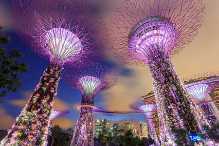 Singapore City, Singapore - Supertree grove in Gardens by the Bay and Marina Bay Sands in Singapore under moving clouds in blue sky at night Editorial