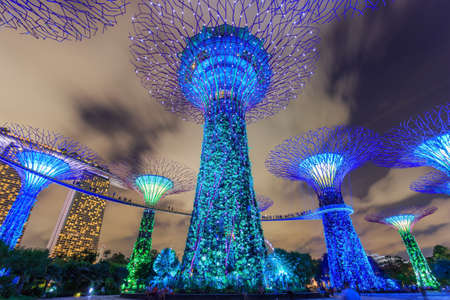 Singapore City, Singapore : Supertree grove in Gardens by the Bay in Singapore under moving clouds in blue sky at night Editorial