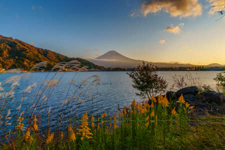 Autumn in Mount Fuji with Lake Kawaguchiko is the best places in Japan to enjoy Mount Fuji scenery of maple leaves changing color giving image of those leaves framing Mount Fuji at twilight or sunset