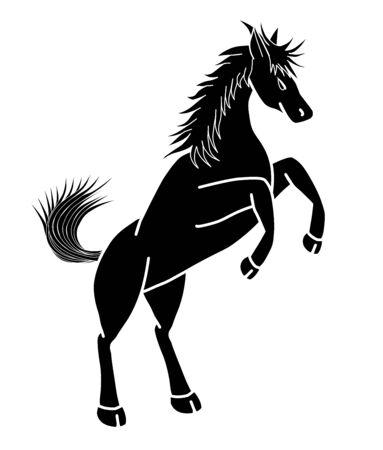 La forma del caballo blanco y negro