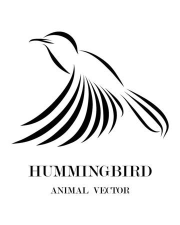 black line art Vector illustration on a white background of flying 
