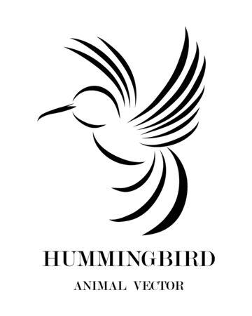 Black line art Vector illustration on a white background of flying hummingbirds.