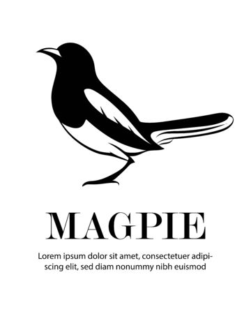 Black Vector illustration on a white background of a magpie. Suitable for making logo.