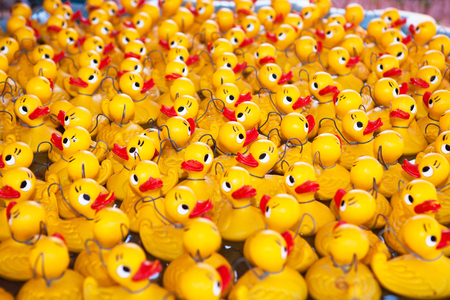 Yellow ducks floating in a pool