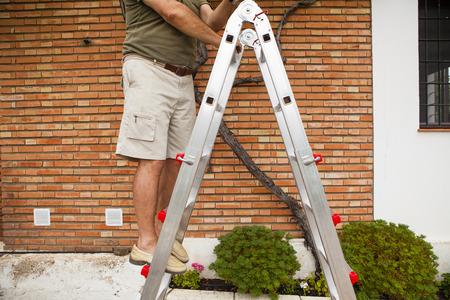 ladder: Senior man legs in a ladder. Stock Photo