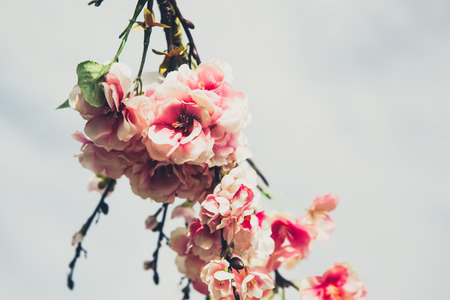 Detail of pink flowers. Wedding decor.