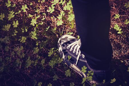 Foot in sneakers walking in the forest.