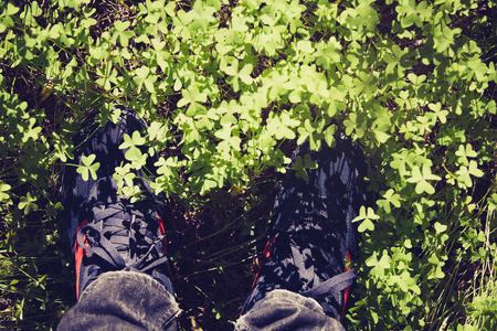 Sport shoes covered by plants.