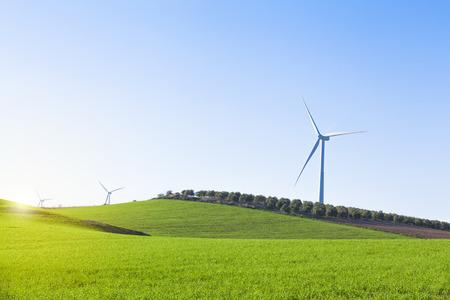 olivo arbol: Molinos de viento en el campo aterrizan con fondo de cielo azul. Foto de archivo