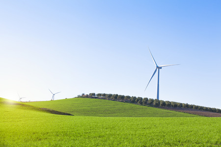 olive  tree: Windmills in the countryside land with blue sky background.