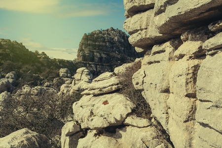 karst: Karst rocks  landscape. Stock Photo