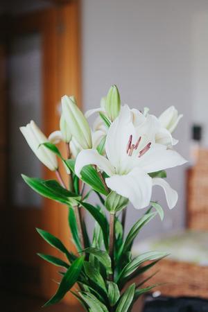 Wedding flowers detail.