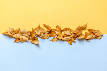 Line of yellow dry leaves dividing the background in two colours: Yellow and Blue. Stockfoto