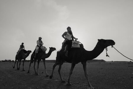 Sahara Desert, Morocco - September 18th, 2019: Three tourist women riding camels to visit desert dunes, during adventure experience in Sahara Desert, Morocco .