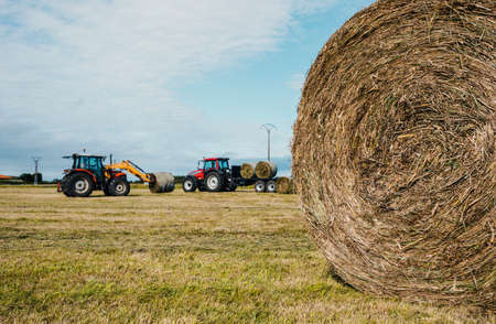 Rounded straw bale and two tractors working in the background Banque d'images