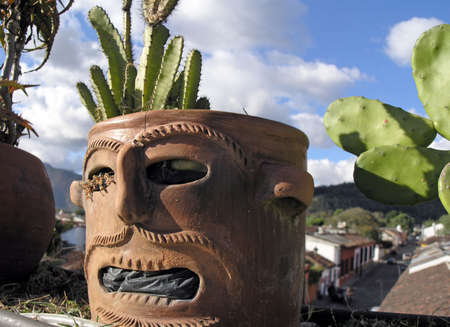 funy:  funy face pot with cacti and antigue streets background