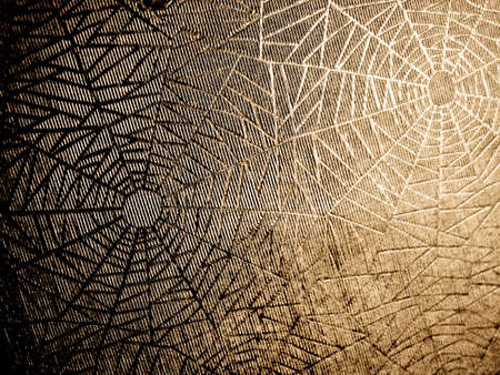 cobwebs:  old paper with cobweb pattern ( background texture ) Stock Photo