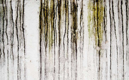 grunge old wall texture with water damage  Imagens