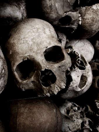 human skulls  Imagens
