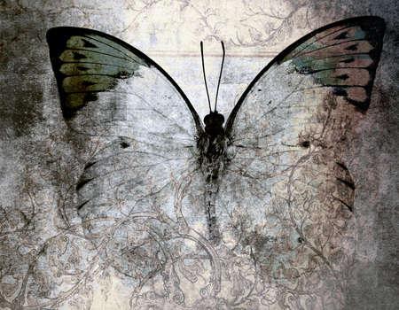 absztrakt: absztrakt pillangó háttérben