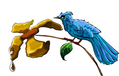 poetic: A blue bird with a yellow flower and with water