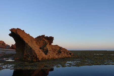 Rocks and algae covered ground during low tide at Point Lonsdale, Australia Imagens