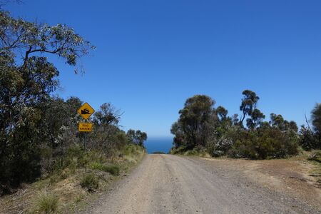 Road to Wreck Beach in Otway National Park. Perfect weather conditions. Stok Fotoğraf