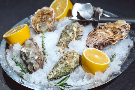 Oysters on stone plate with ice and lemon Banque d'images