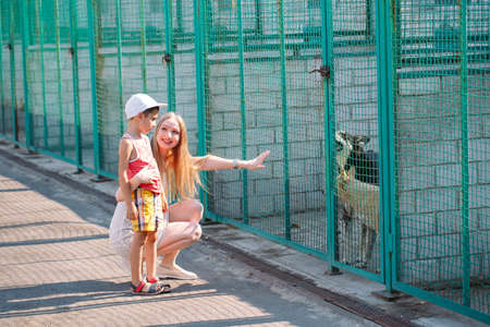 A young family is looking for a pet in a dog shelter. Stock fotó