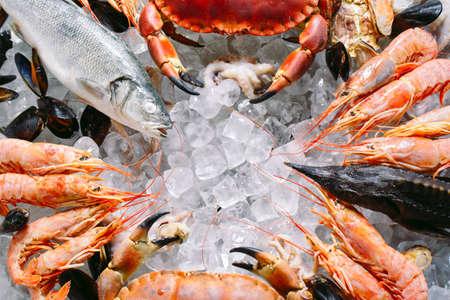 Mariscos en hielo. Cangrejos, esturión, mariscos, camarones, Rapana, Dorado, sobre hielo blanco.