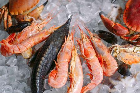 Seafood on ice. Crabs, sturgeon, shellfish, shrimp, Rapana, Dorado, on white ice.