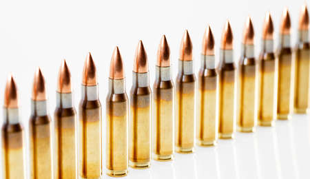 Hunting cartridges of caliber. 308 Win