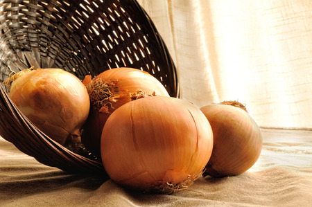 onions out of a wicker basket on a table cloth tablecloth brown