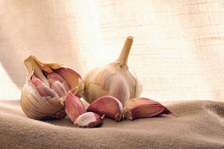 two heads: two heads of garlic on brown fabric with background