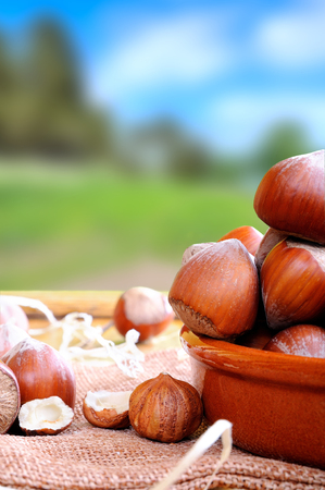 vertical composition: Group of appetizing hazelnuts in shell and shelled on a wooden table in field vertical composition