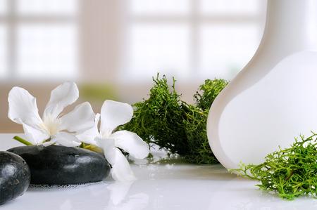 algas marinas: producto de belleza con algas en un recipiente blanco sobre una mesa de cristal blanco en un baño Foto de archivo