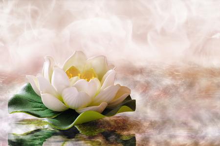 Lirio de agua flotando en el agua caliente. Spa, la relajación, la meditación y el concepto de salud. Composición horizontal.
