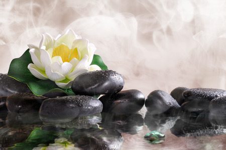 Water lily on black stones in the warm water, steam background. Spa, relaxation, meditation and health concept.