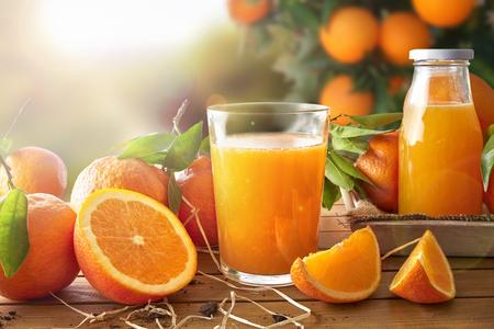 Szklanka soku pomarańczowego na drewnianym stole z butelką i pomarańczowych sekcjach. Drzewa i pola w tle z wieczornym słońcu. Skład poziome. Przedni widok