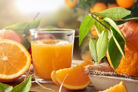 ボトルとオレンジ色のセクションの木製テーブルの上のオレンジ ジュースのガラス。夕日とツリーとフィールドの背景。水平方向で構成。フロント