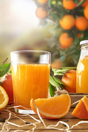 Glass of orange juice on a wooden table with bottle and orange sections. Tree and field background with evening sun. Vertical composition. Front view