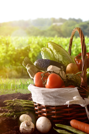 Assortment of vegetables in a wicker basket on soil with crop landscape background. Vertical composition. Front view