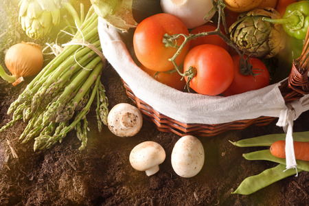 Assortment of vegetables in a wicker basket on soil with crop landscape background. Horizontal composition. Top view