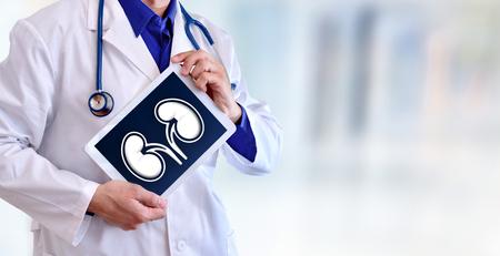 Artsenclose-up van een arts die een beeld van een nier op een tablet in een het ziekenhuisgang tonen