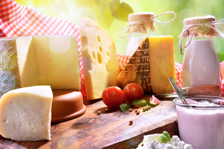 Large assortment of artisanal dairy products on a wooden table with green background with leaves close up. Front view. Horizontal composition 版權商用圖片