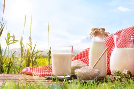 Samenstelling met rijstdrank op houten voet in het veld. Alternatieve melk. Vooraanzicht. Horizontale compositie Stockfoto