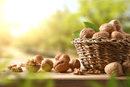 Basket full of walnuts on a table with split walnuts with seeds in sight on wooden table in a field of walnut trees. Banco de Imagens