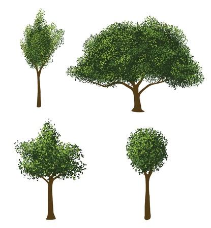 벡터 나무 세트